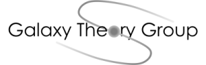 THEORY GROUP Logo